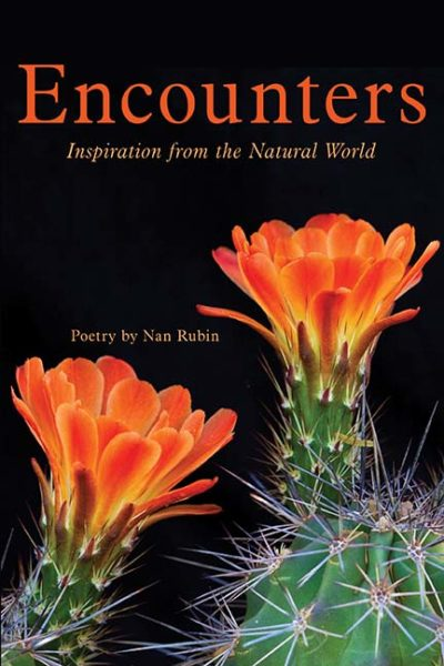 Encounters: Inspiration from the Natural World by Nan Rubin