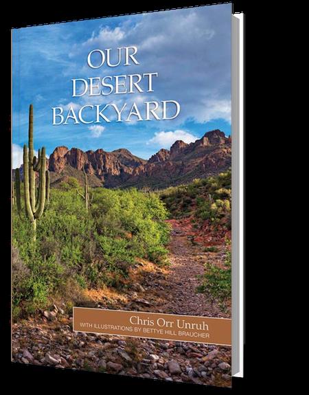 Our Desert Backyard by Chris Orr Unruh